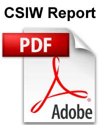 CSIW-Report